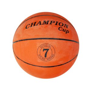 basketbal2491