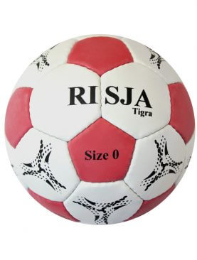 Risja Tigra handbal